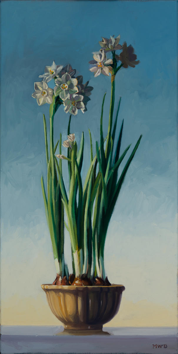 Narcissus in Winter - 12x24
